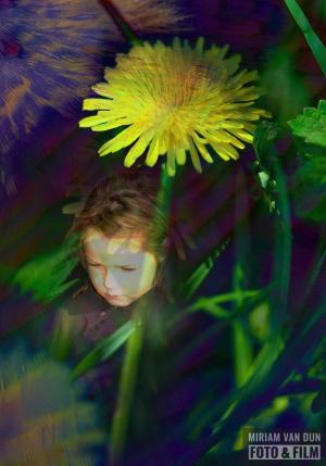 Lentebloem voor Keukenhof MiriamvanDunFoto