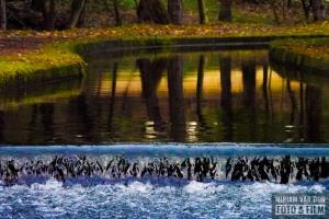 Amsterdamse Waterleidingduinen MiriamvanDunFoto