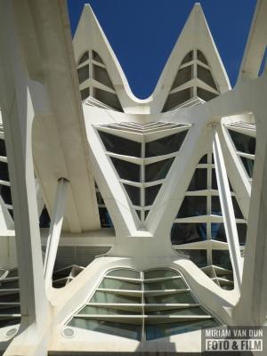 Calatrava Valencia