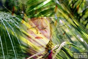 Jane MiriamvanDunFoto