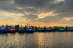 Vissershaven van Yerseke