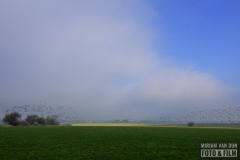 Achterland IJsselmeerkust